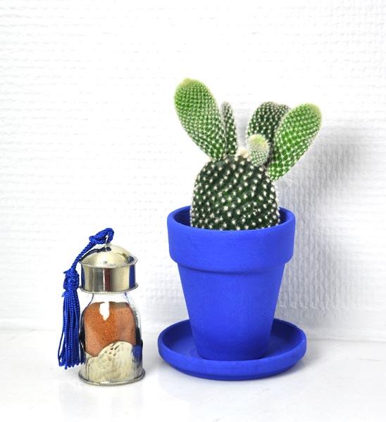 blumentoepfe im greenbop online shop kaufen. Black Bedroom Furniture Sets. Home Design Ideas