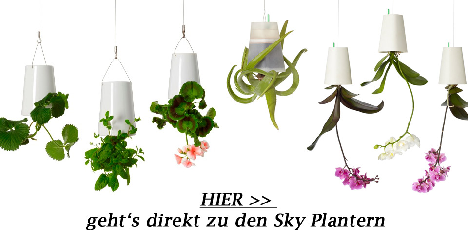 sky planter im greenbop online shop kaufen. Black Bedroom Furniture Sets. Home Design Ideas