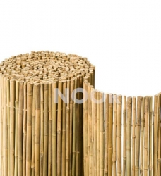 Bambus Sichtschutz Bahia
