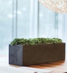 Blumenkasten Beton schwarz