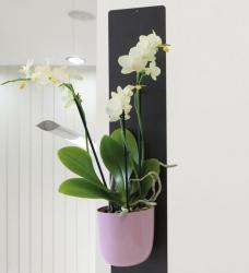 Orchideentopf magnetisch