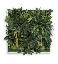 Pflanzenbild Dschungel 80 x 80 cm