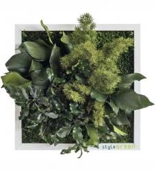Pflanzenbild 22 x 22cm