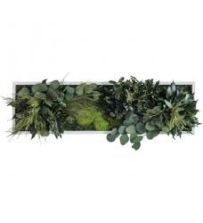 Pflanzenbild 70 x 20cm