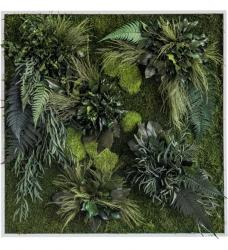 Pflanzenbild 80 x 80cm