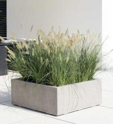 Pflanzkübel Beton 100 x 100 cm DIVISION