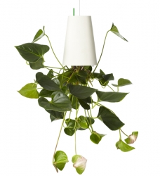 boskke Sky Planter Recycled