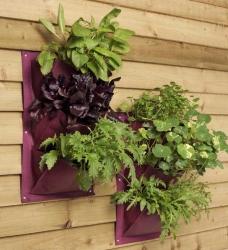 Burgon & Ball Verti-Plant aubergine