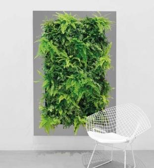 LivePicture XL Pflanzenbild 112 x 170 cm