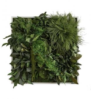 Pflanzenbild Dschungel 55 x 55 cm