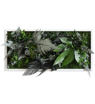 Pflanzenbild 57 x 27 cm