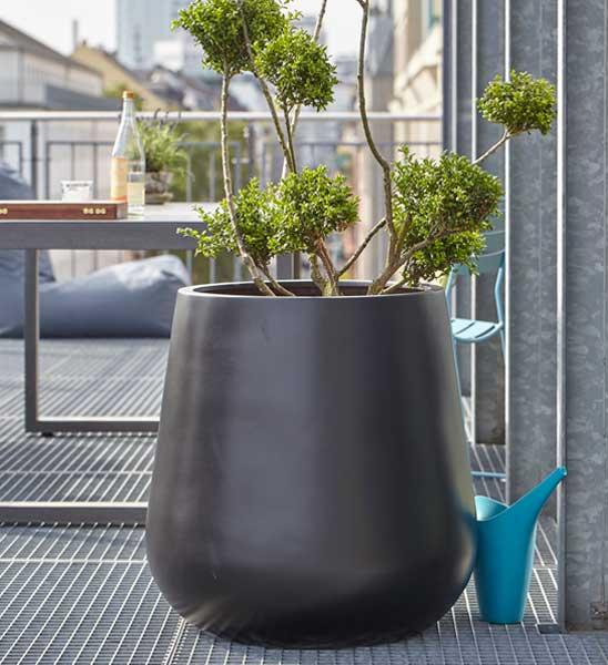 Blumenkübel bauchig schwarz | im Greenbop Online Shop kaufen
