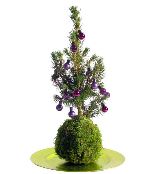 mini weihnachtsbaum geschm ckt im greenbop online shop. Black Bedroom Furniture Sets. Home Design Ideas