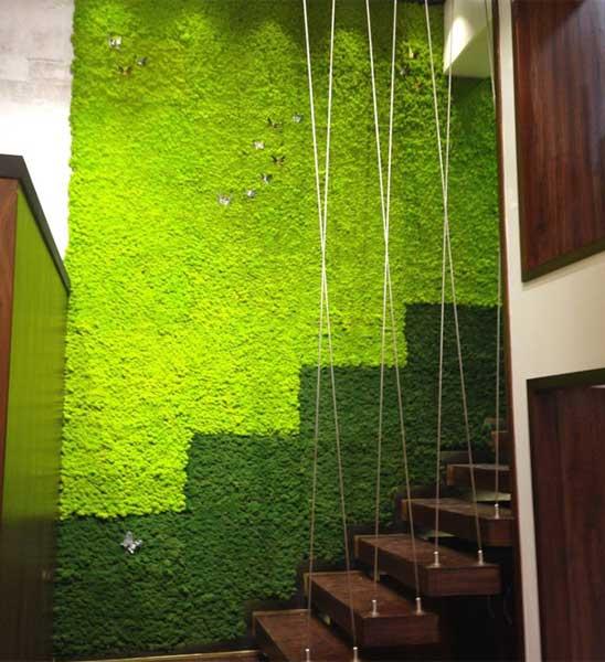 mooswand aus islandmoos im greenbop online shop kaufen. Black Bedroom Furniture Sets. Home Design Ideas