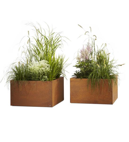 pflanzk bel thallo cortenstahl im greenbop online shop kaufen. Black Bedroom Furniture Sets. Home Design Ideas