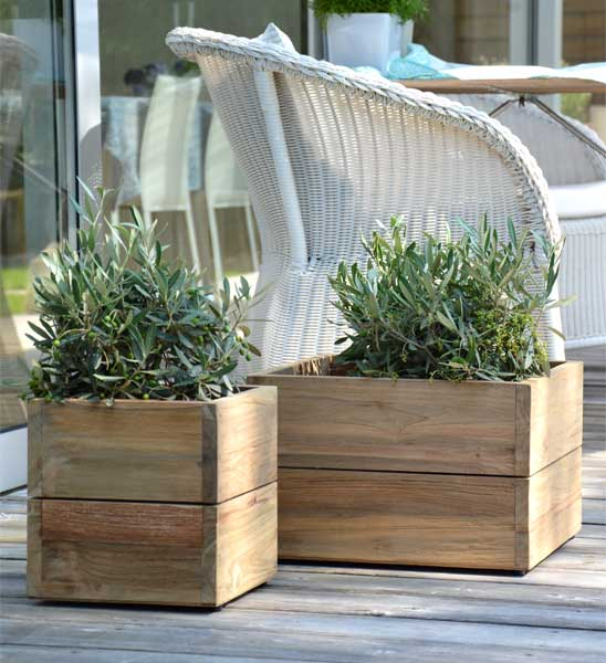pflanzk bel teak minigarden im greenbop online shop kaufen. Black Bedroom Furniture Sets. Home Design Ideas