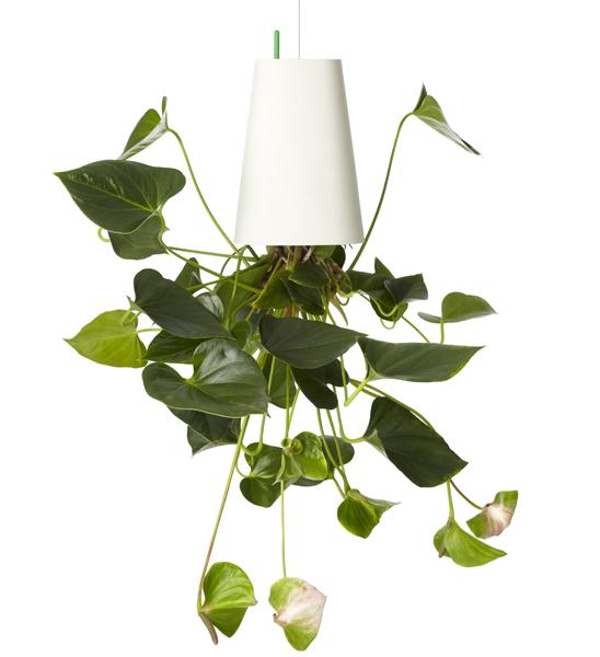 boskke Sky Planter Recycled   im Greenbop Online Shop kaufen
