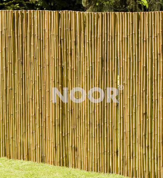 bambus sichtschutz matte deluxe ab 44 99 44 99