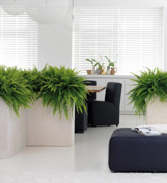 Blumenkübel DIVIDE creme 100x35/80 cm   im Greenbop Online Shop kaufen