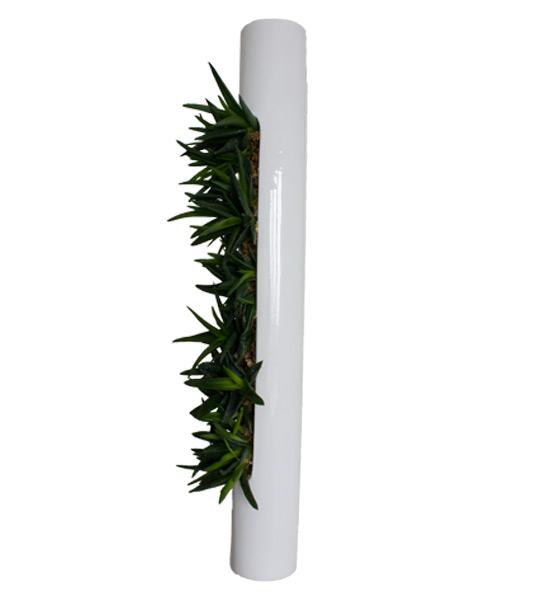 flowerbox wei mit sukkulenten im greenbop online shop. Black Bedroom Furniture Sets. Home Design Ideas