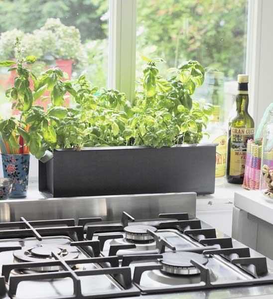 kr uterkasten metall anthrazit provence im greenbop online shop kaufen. Black Bedroom Furniture Sets. Home Design Ideas