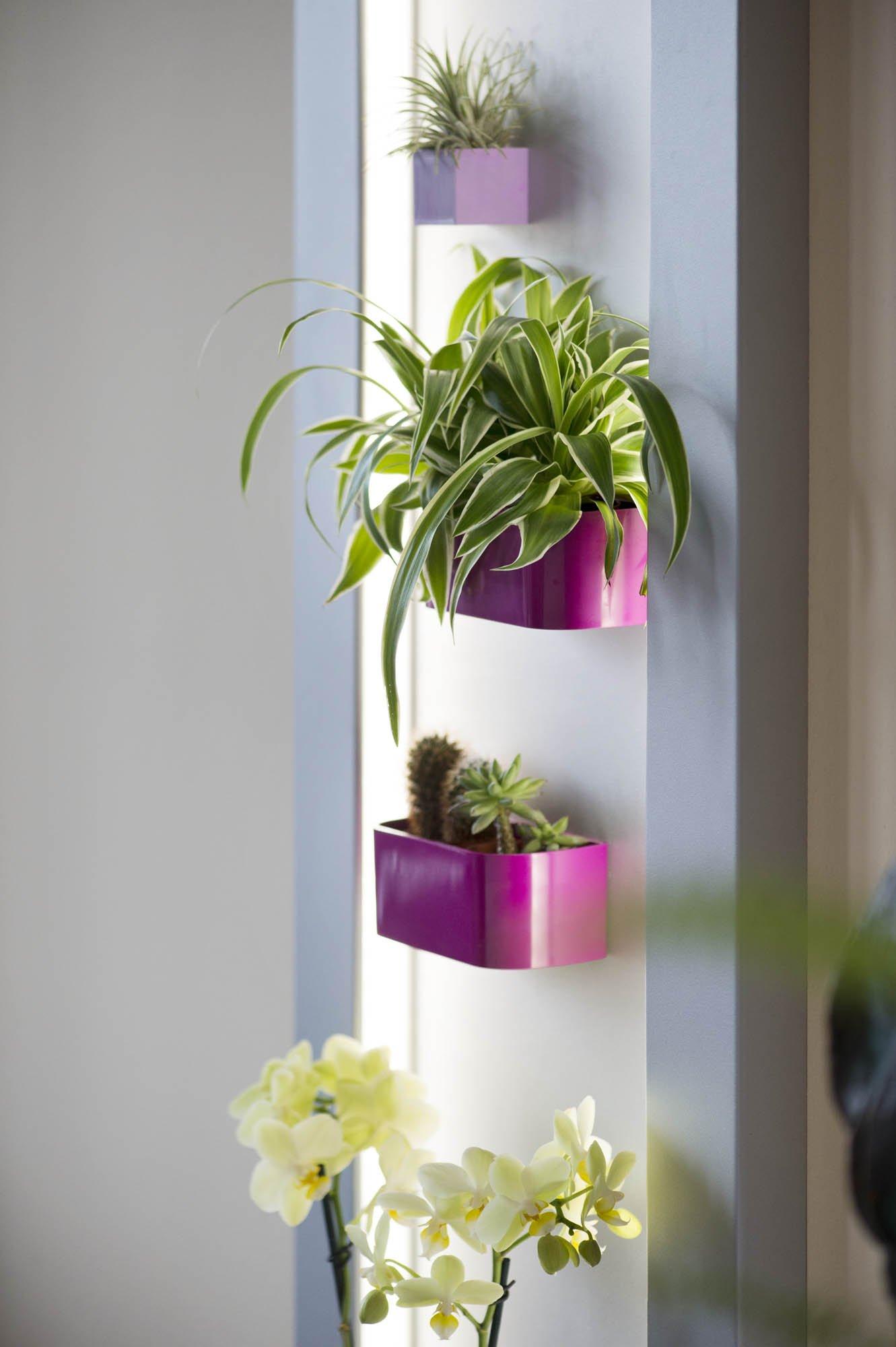 magnettafel mit rahmen beleuchtet im greenbop online shop kaufen. Black Bedroom Furniture Sets. Home Design Ideas