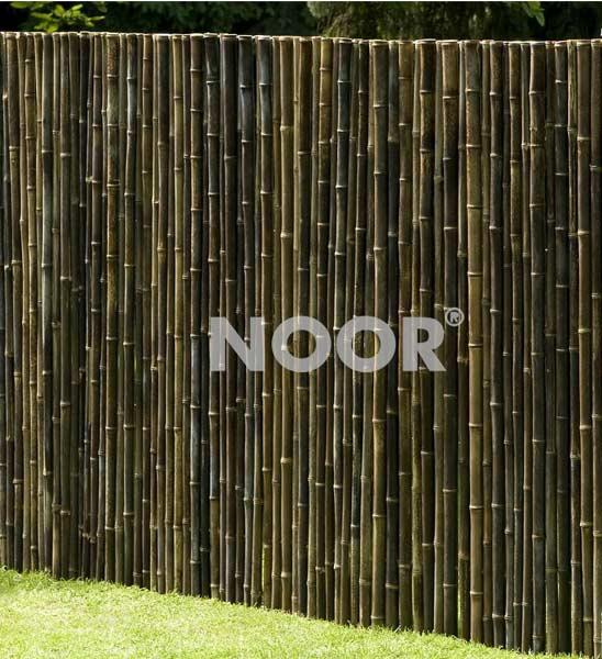Bambus sichtschutz black deluxe im greenbop online shop kaufen