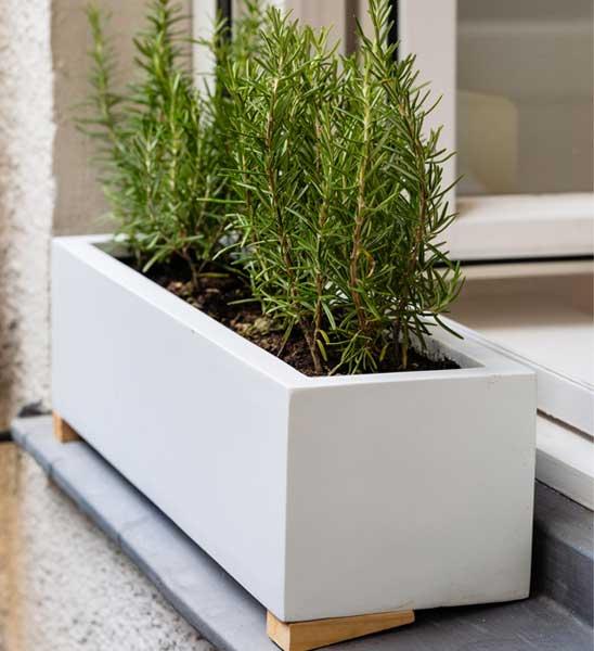 blumenkasten wei lang im greenbop online shop kaufen. Black Bedroom Furniture Sets. Home Design Ideas