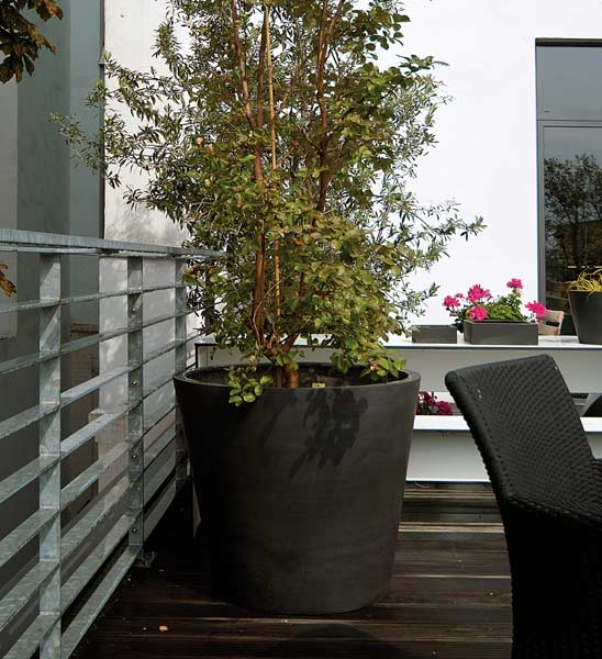 blumentopf schwarz im greenbop online shop kaufen. Black Bedroom Furniture Sets. Home Design Ideas