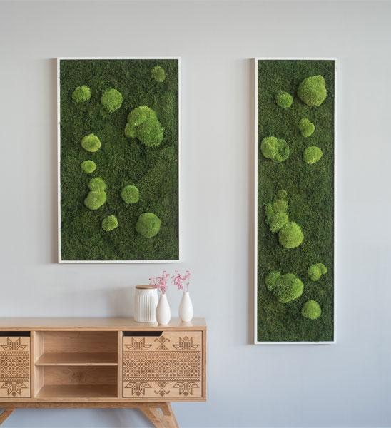 moosbild 140 x 40 cm im greenbop online shop kaufen. Black Bedroom Furniture Sets. Home Design Ideas