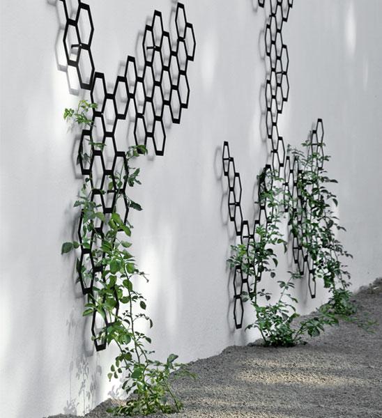 flora combination spalier 50 im greenbop online shop kaufen. Black Bedroom Furniture Sets. Home Design Ideas