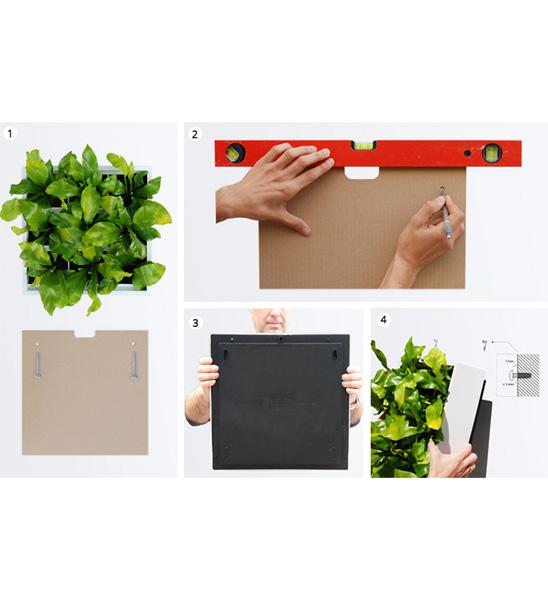 Wandbegrünung Innen Selber Machen pflanzenwand karoo grau im greenbop shop kaufen