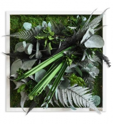 Pflanzenbild 35 x 35 cm