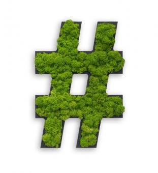 Hashtag aus Moos