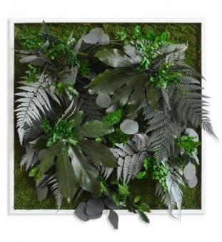 Pflanzenbild 55 x 55cm