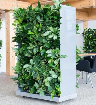 Raumteiler mit Pflanzen